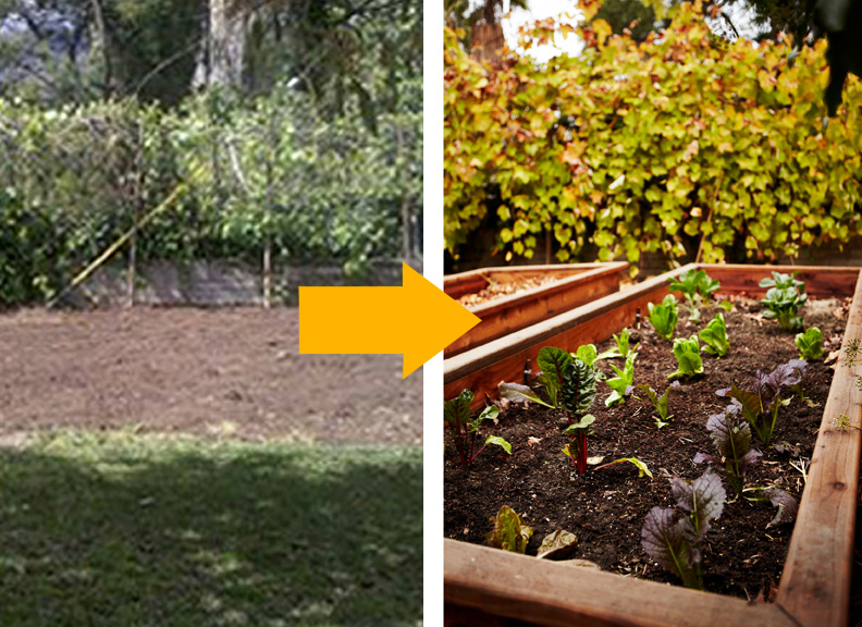 sustainable-vegetable-garden-orlando-melinda-joy-shambhalla-institute